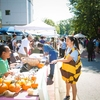 Students help spread the word about Emory's Pollinator Protection Commitment