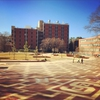 What Harrelson Hall's former site looks like after building deconstruction.