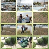 Cleanup of our local parks by the Cyprus School of Molecular Medicine
