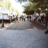 UT Farm Stand long lines before opening first event