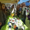 Student line up at the Office of Sustainability's booth at the Earth Day Expo to plant succulents.
