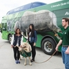 Colorado State students greet campus mascot, Cam the Ram, in front of a campus shuttle bus.