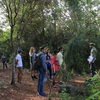 Every FIU Nature Preserve Volunteer Day begins with a short tour of the Preserve