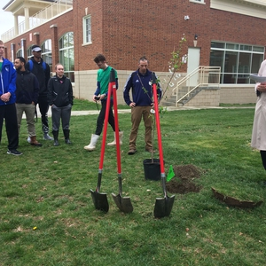Carbon Neutral Green Basketball Game Tree Planting