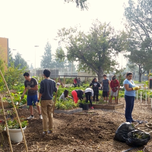 Creating a Healthy, Environmentally Responsible and Socially Just Campus Food System