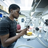 VA-NC Alliance summer research program student, Korey Smith, works at a microscope.