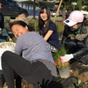 Pro staff & students install over 300 Carex plants & 15 trees