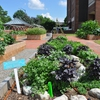 Main Edible Campus UNC Garden
