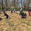 Students volunteering on Kean University's Liberty Hall Farm