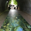 Art students, with faculty member Chris Hocking, of the Lamar Dodd School of Art painted a mural of a stream bed that hung in a pedestrian tunnel during Earth Week.