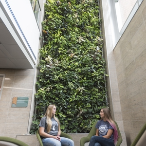 Delta College Living Wall