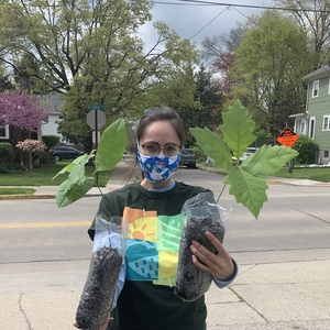Saplings for Earth Day
