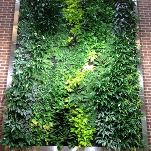 Rainwater Harvesting and Green Wall in LEED Gold building