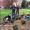 SOU Students Planting Natives on Arbor Day