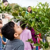 Children Visit the Community Garden