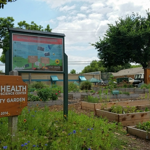 UNT Health Science Center Community Garden: Connecting Health and Wellness to Sustainability