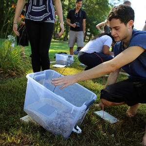 First-year students experiment with the effectiveness of model raingardens simliar to those at the Kern Center.