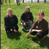 Students pick Dandelions for use in the Catered Dinner for the Festival