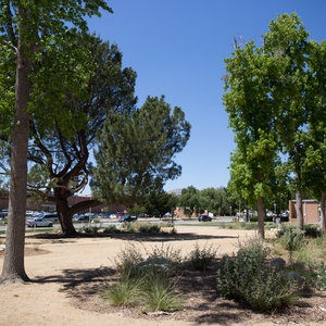 CSUN's Saves 55 Million Gallons per Year Through Various Water Conservation Efforts