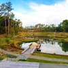 Reclamation Pond