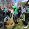 Participants divided into groups to plant four trees—two persimmons and two scarlet oaks—in front of the Barn.