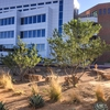 Central New Mexico Community College Low Impact Design and Xeriscaping #SCI2020