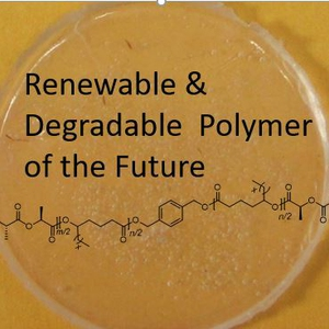 Synthesis and Study of Sustainable Polymers in the Organic Chemistry Laboratory: An inquiry-based experiment exploring the effects of size and composition on the properties of renewable block polymers
