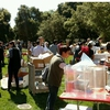 Lab users donate their own items and explore other donated items that may be useful to them during Stanford's fall 2016 lab swap meet.