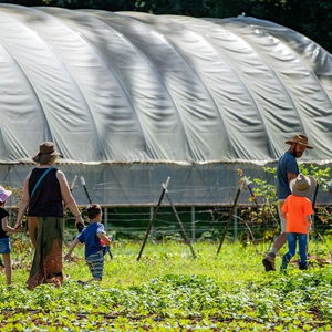 The Working Farms Fund: Partnership to Build a Sustainable Local Food System