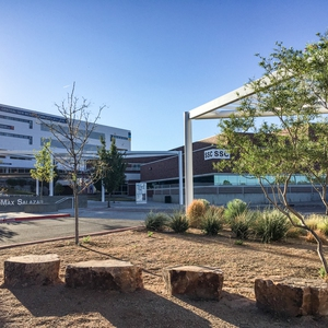 Central New Mexico Community College, Main Campus Detention Basin