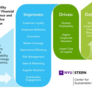 New York University - Return on Sustainable Investment Methodology