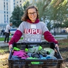 An IUPUI student volunteers during the IUPUI Day of Caring