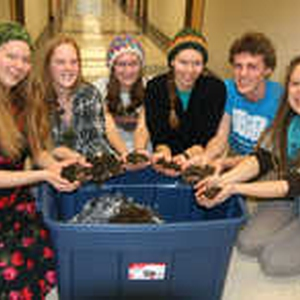 Implementing Vermicomposting in Luther College Residence Halls