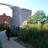 A picture of UWM's grounds that is a good representation of recent stormwater and habitat restoration efforts undertaken.