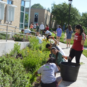 Austin College GreenServe 2016