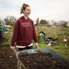 Lafayette College LaFarm student distributes compost to beds in preparation for planting
