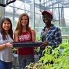 First-year Environmental Fellows and Sustainability Leadership Program members planted milkweed in the campus greenhouse for use in their student-designed pollinator garden.