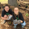 Students take part in a volunteer planting day at SOU's Arbor Day.