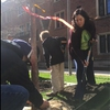 UIC students help fill the hole with dirt and mulch the Bald cypress tree