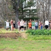 Elon students working at Environmental Center at Loy Farm