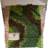 Living Wall at Warner College of Natural Resources at Colorado State University