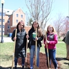 UConn Seniors place the first shovelfuls of mulch over the Class of 2019 Tree, a Celestial Dogwood!