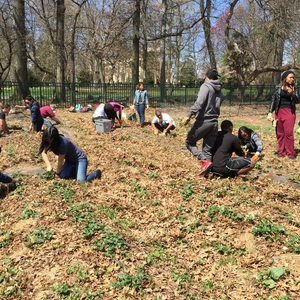 From in-vessel campus composting to sustainable urban farming: connecting science with education and community service
