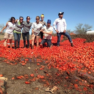 UA Compost Cats: Students Creating Community Partnerships to Turn Garbage into Gardens and Foster Local Food Security