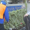 Green Greek Community Street Clean (Delta Upsilon)
