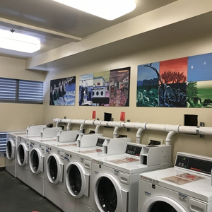 CSU Monterey Bay - Laundry to Landscape