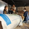 Community Conservation Corps volunteers and staff install insulation for a local homeowner